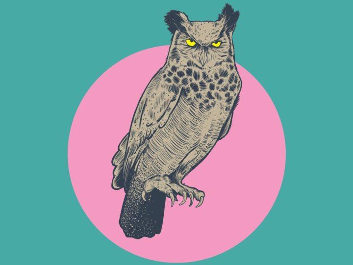 Owl Play Screenprint
